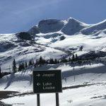 Ausblick vom Icefield Parkway
