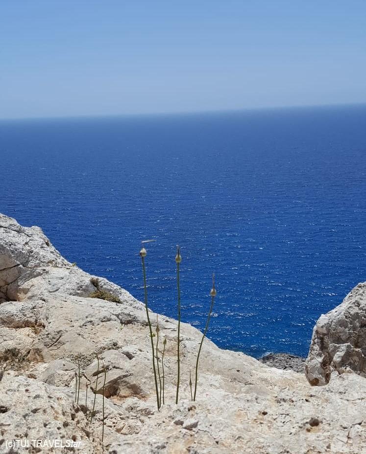 Sommergenuss Zypern