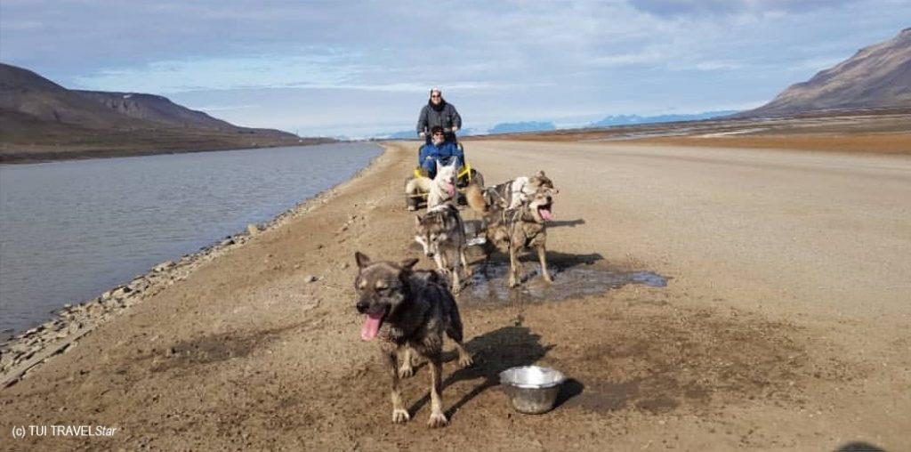 Meeresbrise - Hundeschlittentour
