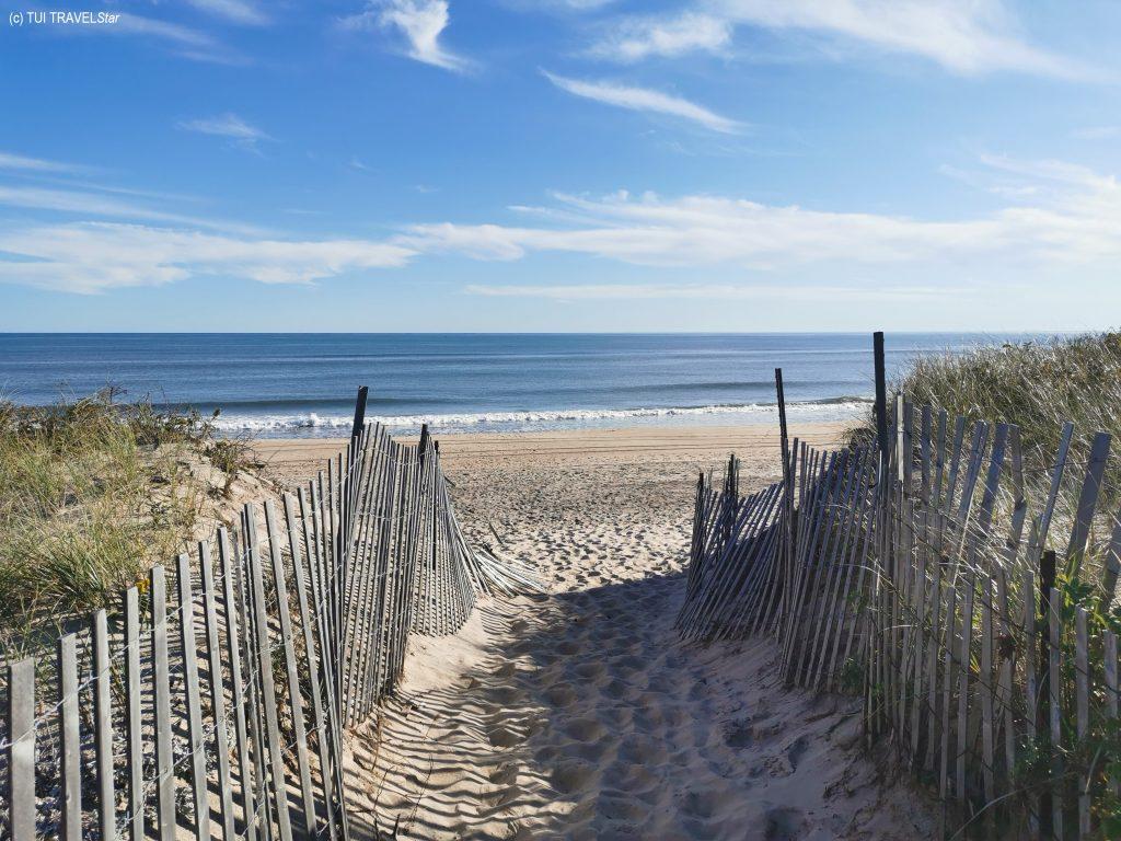 Long Island Strand